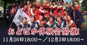 踊るBAKA!東京