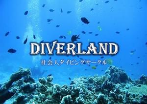 ダイブ好きメンバー集まれ!!社会人ダイビングサークル DIVERLAND