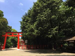 京都をぶらり散歩