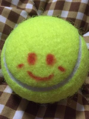 のっぱらテニス同好会(名古屋北区守山区&春日井市で毎週金土日水で活動)