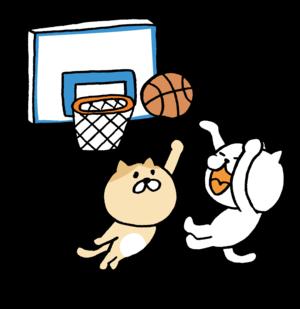 徳島のスポーツサークル(仮)