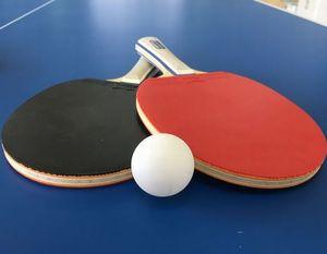 楽しく卓球(初心者向けで身体動かしたい人向け)