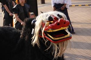 関西獅子舞保存会・獅子狂