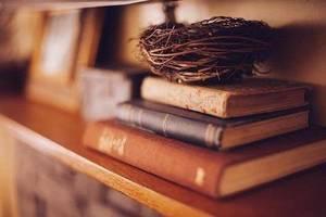読書サークル book&search