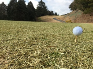 H.E.G.C(Hyogo.Enjoy.Golf.Club)~兵庫県でゴルフを楽しくプレーするための社会人サークル~
