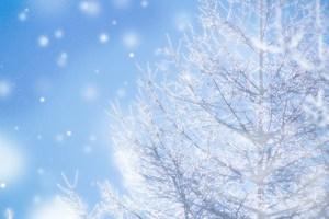 FUYUTOMO(冬友)2019~2020 冬好き、冬イベント好き、スキースノボ好き・・・集まれー♪♪