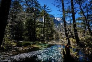 登山で自然散策