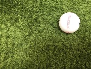 ゴルフ始めました🐥