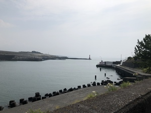 静岡東部中部釣りサークル(釣りしず)