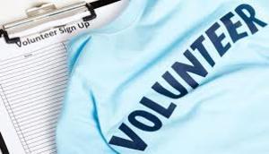 Web情報ボランティア