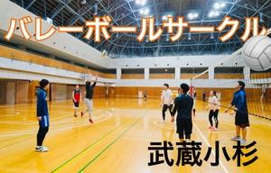 武蔵小杉バレーボールサークル