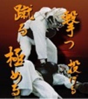総合格闘技 日本拳法 大阪 都島
