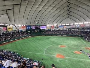 プロ野球愛好会サークル