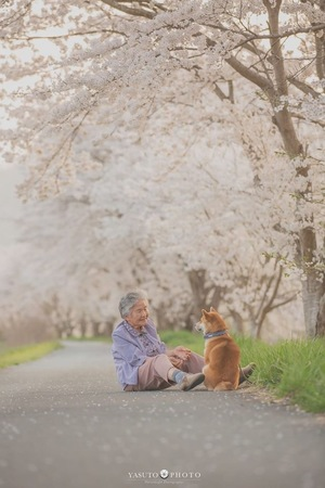 犬友☆沖縄