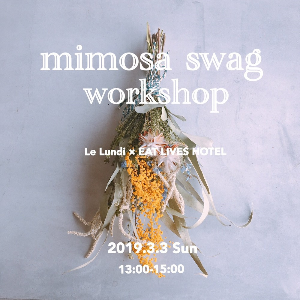 *。mimosa swag workshop *。