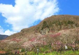 18-29歳限定 初心者5割 土日活動 登山サークル ホムペ インスタみてください❤️