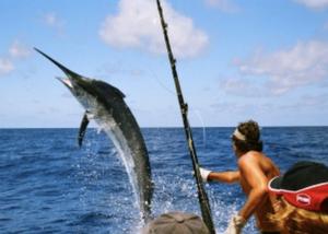 6月23日 日間賀島へ釣りに行こう!