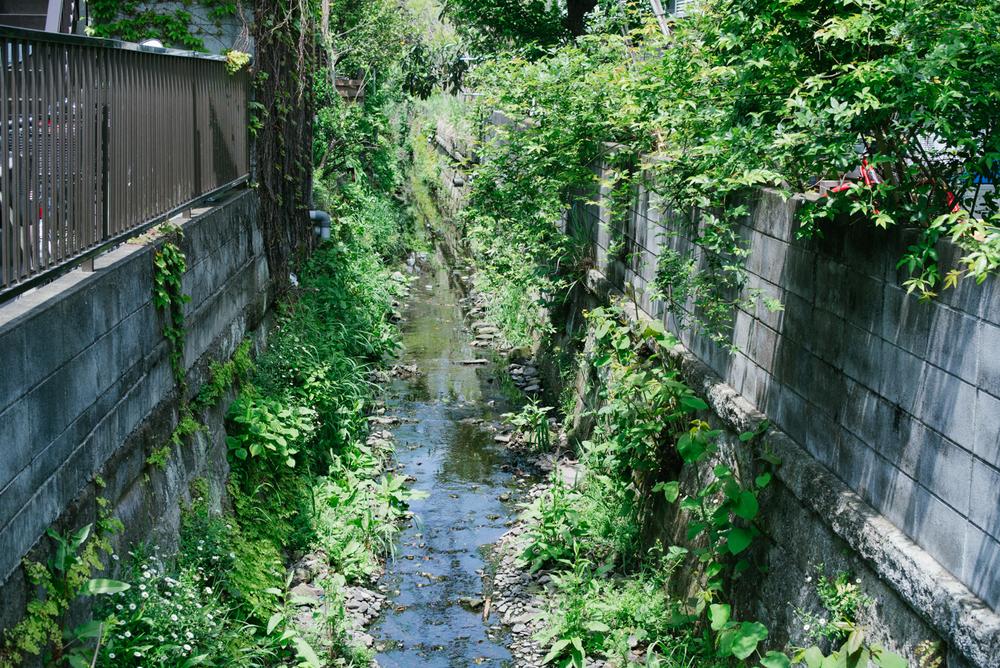 長谷寺と周辺散策