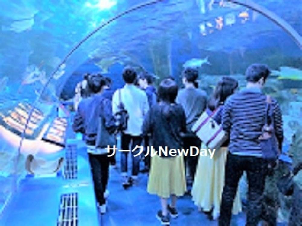 ★2/24 名古屋港水族館で楽しく友達作り ★