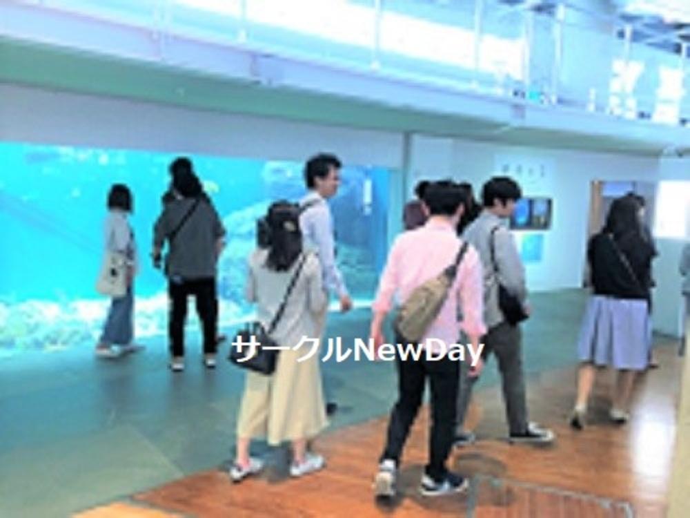 ★12/1 名古屋港水族館で楽しく友達作り ★
