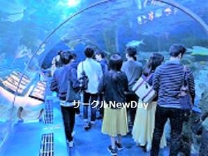 ★奈良の友達作りサークルNewDay★