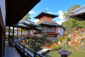 photop* 〜京都の寺社とカメラとカフェ〜