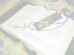 東京聖書勉強会