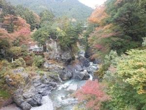 調布セオ会 with 🍀高尾山🍀