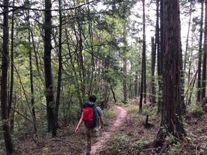 Runと山と時々パン🍞(京都一周トレイ)
