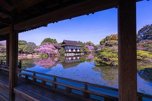 京都、神社・仏閣参拝サークル