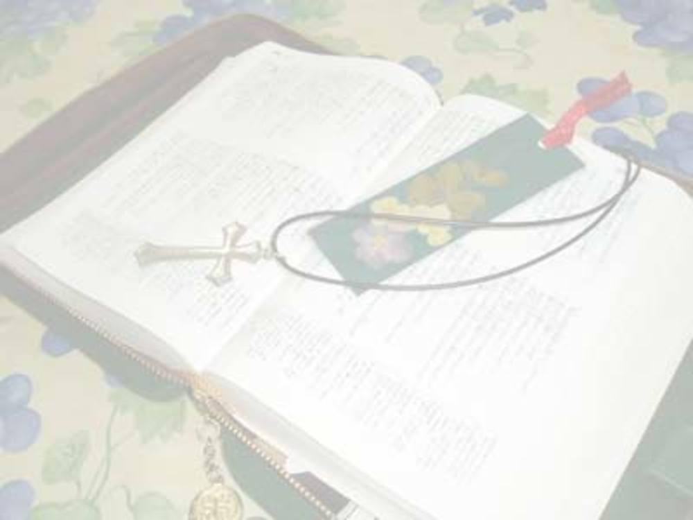 世界最大のベストセラー『聖書』を学びましょう!