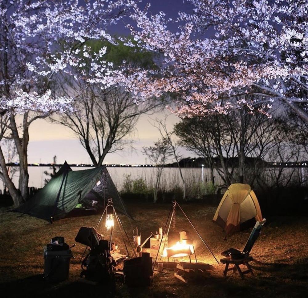 花見キャンプ & NIGHT BBQ🌃🔥