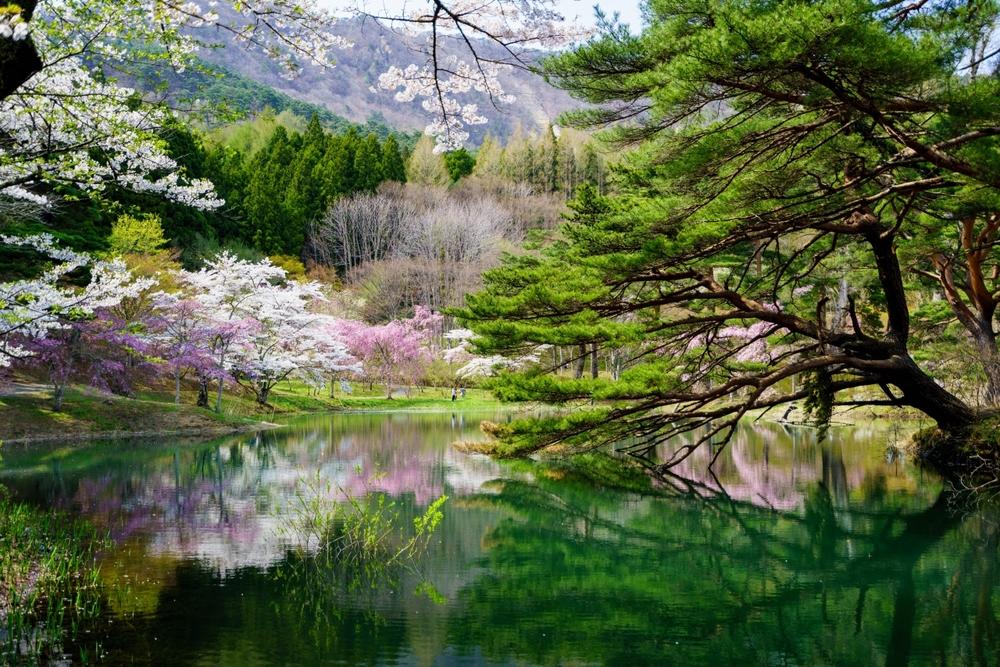 4月26日(日)<ハート型の半田沼を探して春ハイクを楽しもうin半田山>20-30代企画