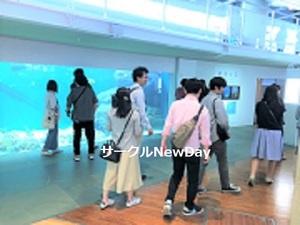 ★12/26 新江ノ島水族館めぐりで楽しく友達作り★