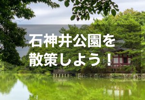 【石神井公園を散策!】四季を感じて、自然に癒されよう~!