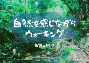 【お散歩×自然観察】等々力渓谷 ※参加無料 自然好き、お散歩好き集まれ!