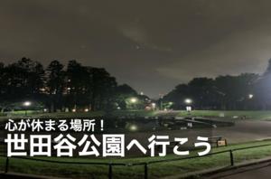 【世田谷公園でナイトウォーク】都会×自然の東京らしさが魅力!世田谷公園へいこう!