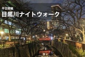 【目黒川×ナイトウォーク】雰囲気抜群!中目黒駅~目黒駅を歩こう!