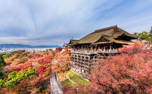 11/26(金)夜出発〜28(日)紅葉を観に行こうin京都
