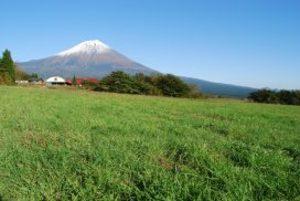 10/16-17 広くて近くて空いてて快適!芝生サイトで富士山キャンプ(残り1枠)