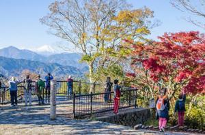 紅葉の高尾山でまったりハイキング!※雨天時はカフェ巡りとトリックアートです!