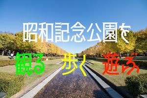 コラボ企画!秋の昭和記念公園散策+ピクニック【入園料込の値段です】20-30代中心!