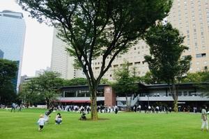 【緑あふれる憩いの場✨】 新宿中央公園でナイトピクニック🌠😊