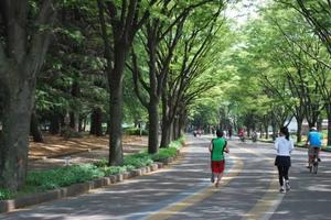 【駒沢公園駅・公園内のトレーニングルーム発!】駒沢オリンピック公園ランニング!
