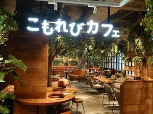 【川崎カフェ会】20〜30代中心の同年代カフェ会!