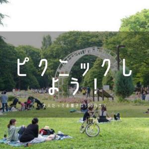 【ピクニック】大人の遠足in代々木公園♪【大人のブランチ】