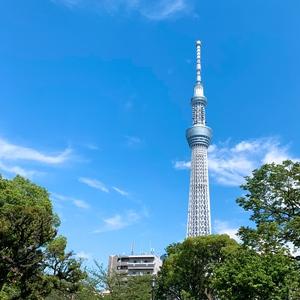 【パークヨガ×ピクニック】スカイツリーが見える隅田公園でヨガをしよう!