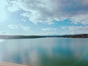 【長距離ランニング企画】多摩湖周辺をのんびり走ろう!