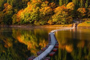 「紅葉を見に奥多摩湖へ行こう!早割中」