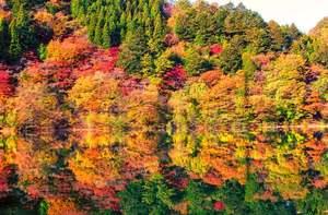 「エメラルドグリーン&紅葉を見に行こう!」